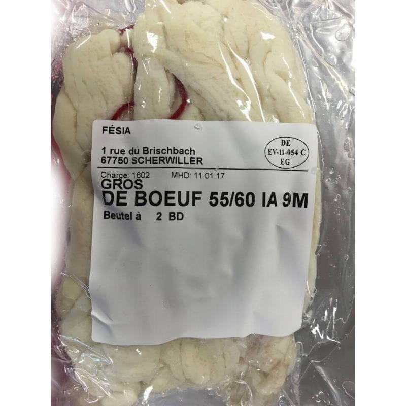 Gros de Boeuf 55/60